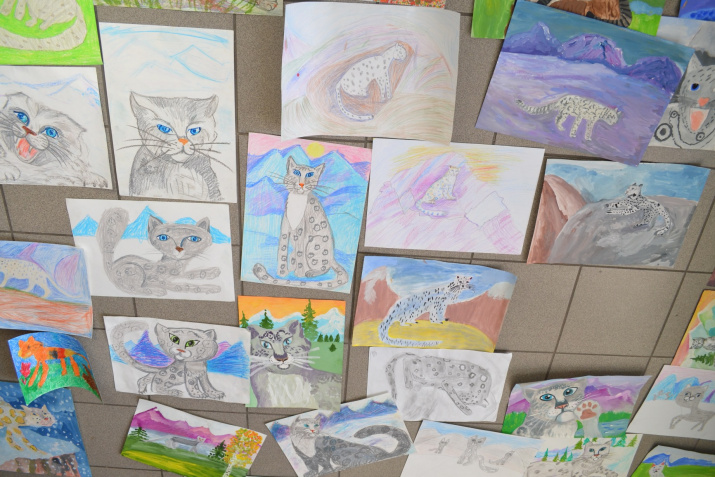 Works of the drawing contest