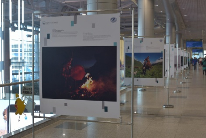 The photo is provided by the Domodedovo airport