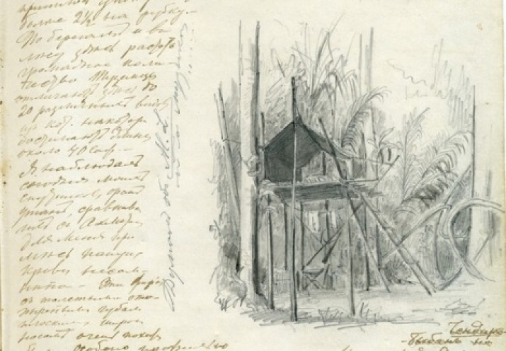 A drawing by Miklukho-Maclay from the archive of the Society