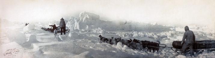 Экспедиция Циглера на 82° с. ш., март 1905 года. Фото: wikipedia.org