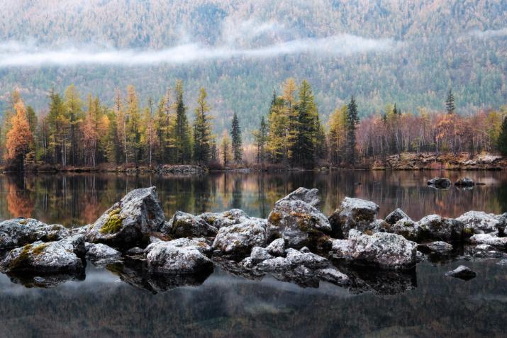 Фото: Евгений Трезубов