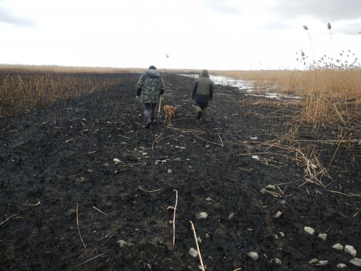 Местные охотники обнаружили полосу камней
