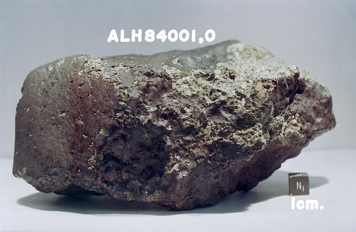 Метеорит ALH84001. Фото: сайт nasa.gov