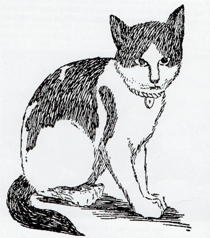 Рисованный портрет Нансена, автор Йохан Корен. Источник: wikipedia.org