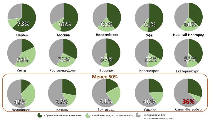 Доля и структура зеленой инфраструктуры в 15 крупнейших городах России. Изображение предоставлено пресс-службой географического факультета МГУ