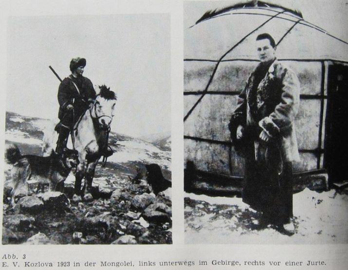 Козлова в Монголии /Piechocki, R. 1983. Abriß zur Erforschungsgeschichte der Avifauna mongolica. Erforsch. biol. Ress. MVR 3: 5–31/ Википедия