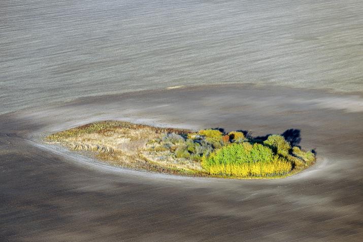 Видео и факты о роли почвы в жизни на Земле