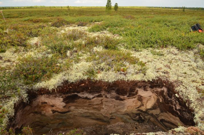 Soil ART