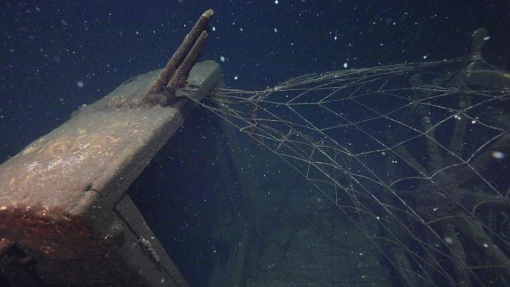 """Несмотря на плохую видимость под водой, исследователям удалось идентифицировать погибшие 80 лет назад суда. Фото: """"Разведывательно-водолазная команда"""""""