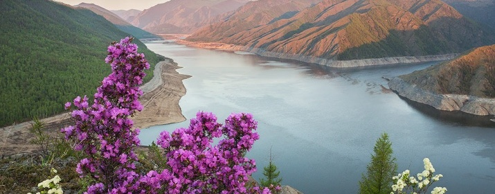Southern Siberia. Photo is provided by the Sayano-Shushensky reserve