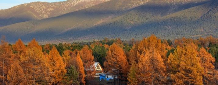 Фото: Сергей Шитиков