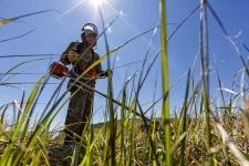 ''Тигры'' начали работы на новой экологической тропе ''Озеро Благодатное''