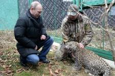 Владимир Путин в Центре разведения и реабилитации переднеазиатского леопарда с директором Центра Умаром Семёновым
