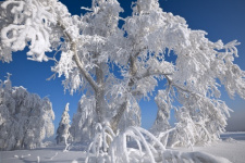 The Russian winter. Photo be Sergey Ivanov, the winner of the photo contest «The most beautiful country»