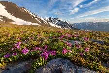 Алтай, перевал Кара-тюрек Фото: Илья Мельников