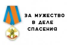 Медаль за мужество в деле спасения