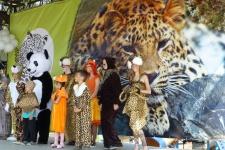 """Панда и её команда. Фото предоставлено ФГБУ """"Земля леопарда"""""""