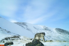 Фото предоставлено Национальным парком «Сайлюгемский»