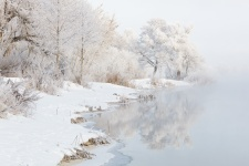 Фото: Дмитрий Питенин