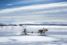 «Faster than a wind». Author Vitaliy Novikov