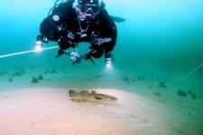 Подводные исследования