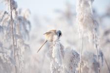 Фото: Юрий Сорокин