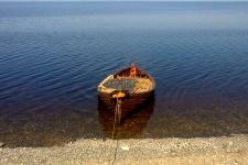 Полная лодка онежской корюшки