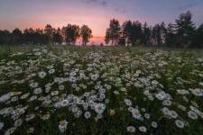 Фото: Андрей Грачёв