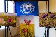 Степные цветы украсили главный зал Географического диктанта в ОГПУ. Фото: Владимира Беребина