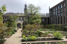 Университетские сады