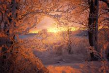Фото: Дмитрий Кулагин