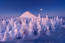 Фото: Дмитрий Кочергин
