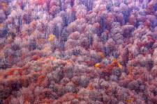 """""""Стена"""". Фото: Сергей Шабанов, финалист III фотоконкурса """"Самая красивая страна"""""""
