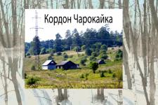 Чарокайский лес (Самарская Лука), 2019