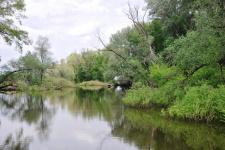 Пойма Урала в устье реки Иртек. Ташлинский район (2012)