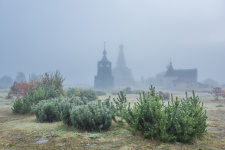 Фото: Виталий Новиков