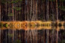 Фото: Вадим Цуприк