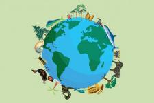 Биологическое разнообразие