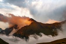 Кавказский заповедник. Фото: Игорь Комиссаров