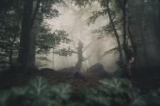 Лесной сторож. Фото: Андрей Сачков