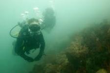 Исследование моря