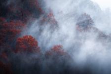 Осенние пожары. Фото: Михаил Дубровинский