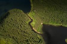 Живописная протока. Фото: Георгий Шпикалов