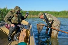 Фото: Наталья Мещерякова/Астраханский государственный заповедник