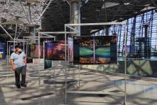 Выставка РГО во Внуково. Фото: пресс-служба аэропорта