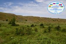 Нижнегорбатовский яр Боковского района Ростовской области