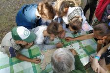 Сбор спилс-карты России