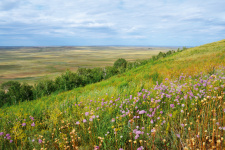 Гора Базарбай на Урало-Илекском ландшафте. Фото: Александр Чибилёв