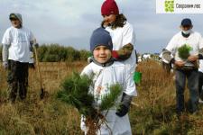 Фото пресс-службы Министерства лесного хозяйства Республики Башкортостан