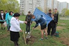 Посадка деревьев. Фото предоставлено Брянским областным отделением РГО